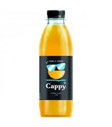 Cappy+_coolandsmile_08.jpg