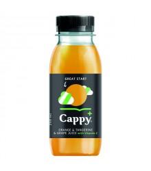 Cappy+_greatstartorange_025.jpg